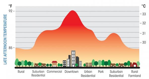 Courbe de température entre rural et urbain pour illustrer l'îlot de chaleur