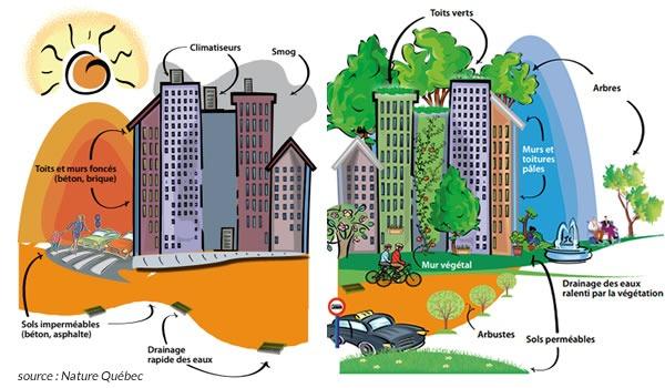 Îlots de chaleur urbains quelles solutions