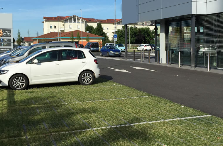 Biodiversité préservée sur un parking commercial végétalisé