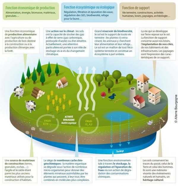 Préservation des fonctions naturelles du sol