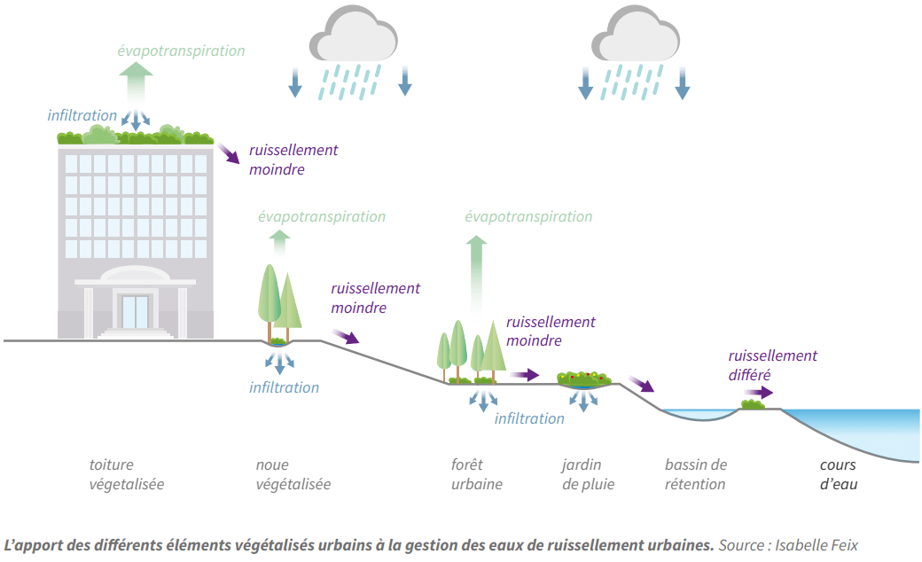 ADEME - végétalisation contre le ruissellement urbain