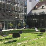 Cour intérieure végétalisée et pavée - Hôtel