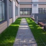 Cour intérieure végétalisée et pavée - Jardin public