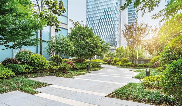 Végétalisation de l'espace public